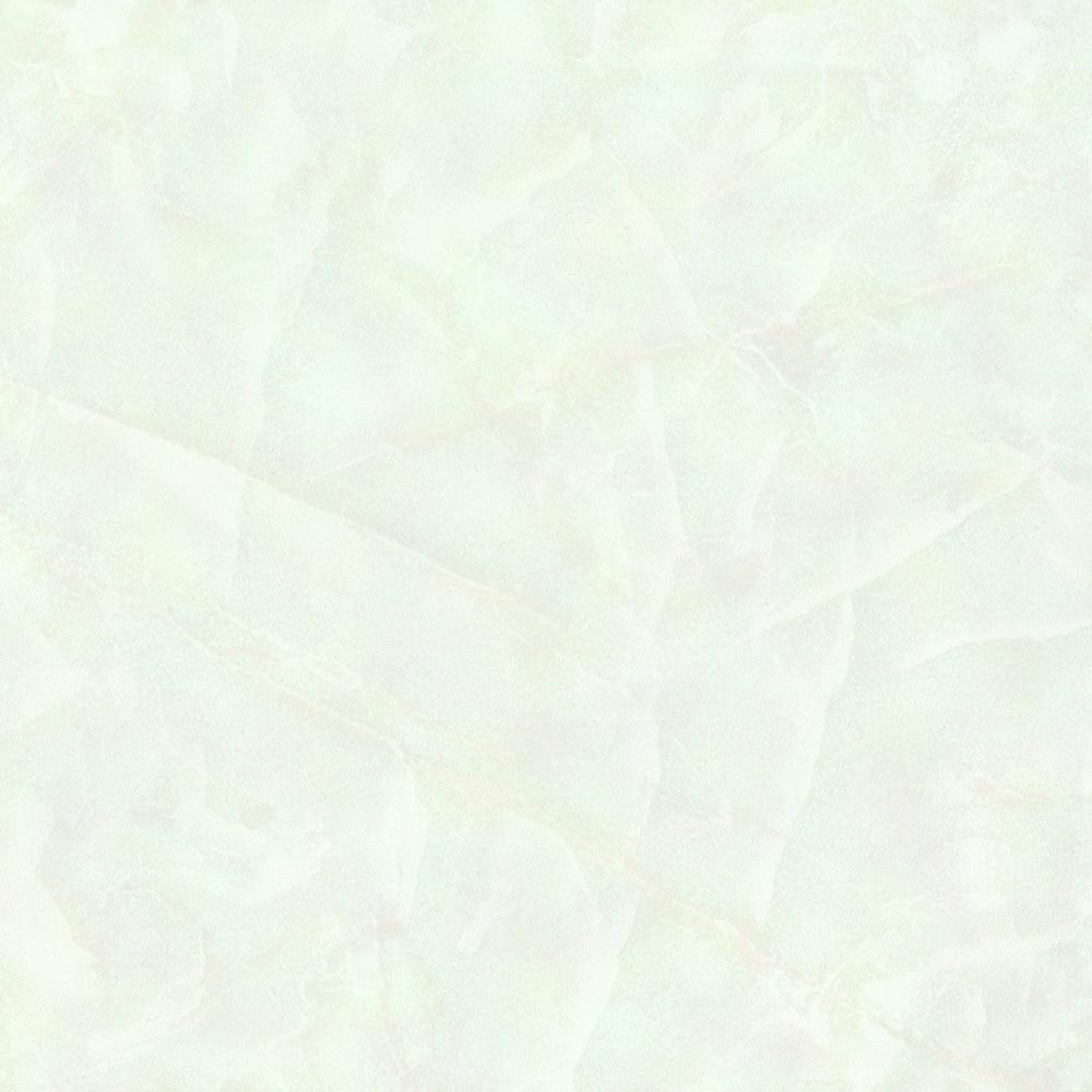 HPVB28007