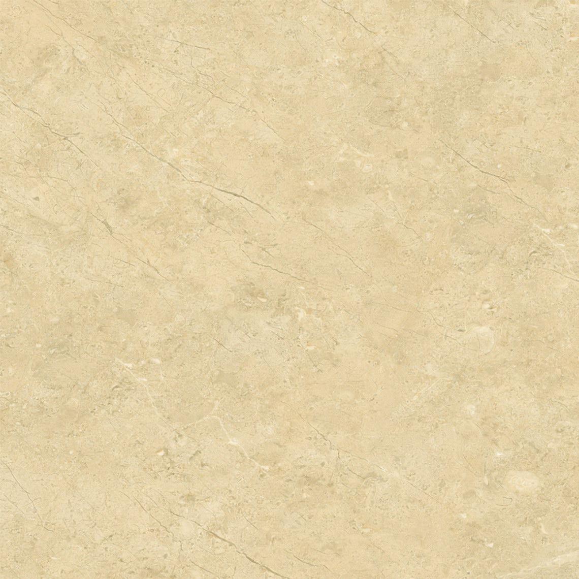 金叶米黄  HPGM80006