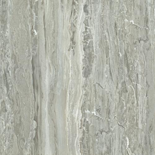 木化石(灰)HPGM80009 800X800mm