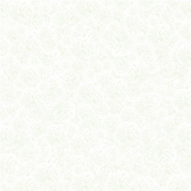 HPVB18017冰玑石(800X800mm)
