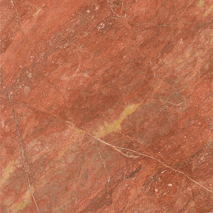 战国红  HG80097 ,800×800