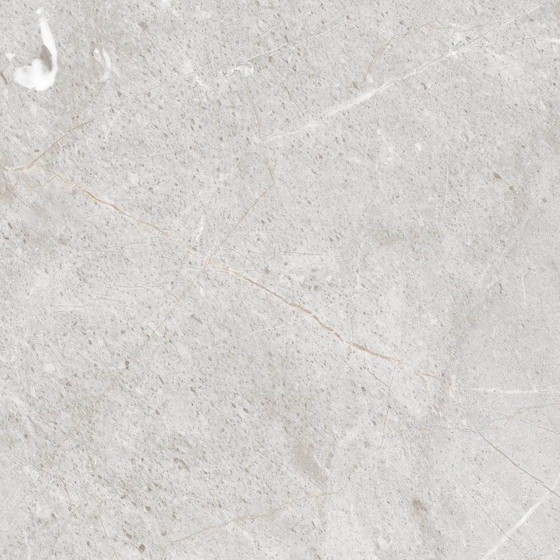 维纳斯灰 HPG80158 ,800x800mm