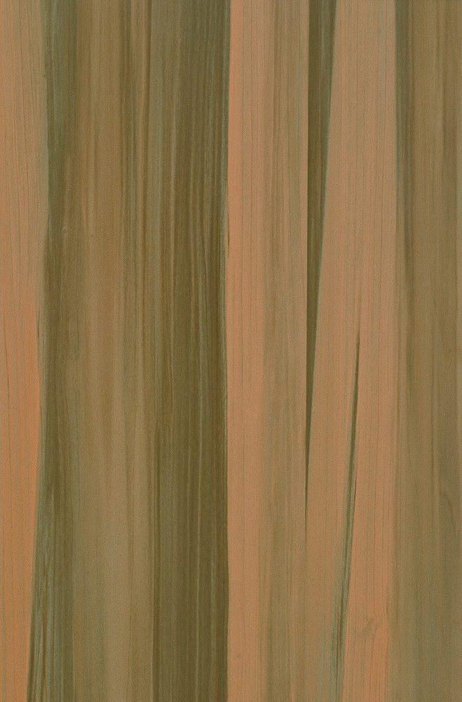 枫木 HG96013 (900mmx600mm)