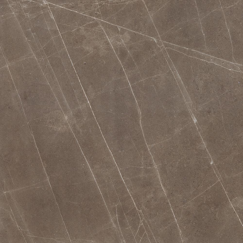 龟纹棕 HPEG90033,900x900mm;HPEG26033,600x1200mm