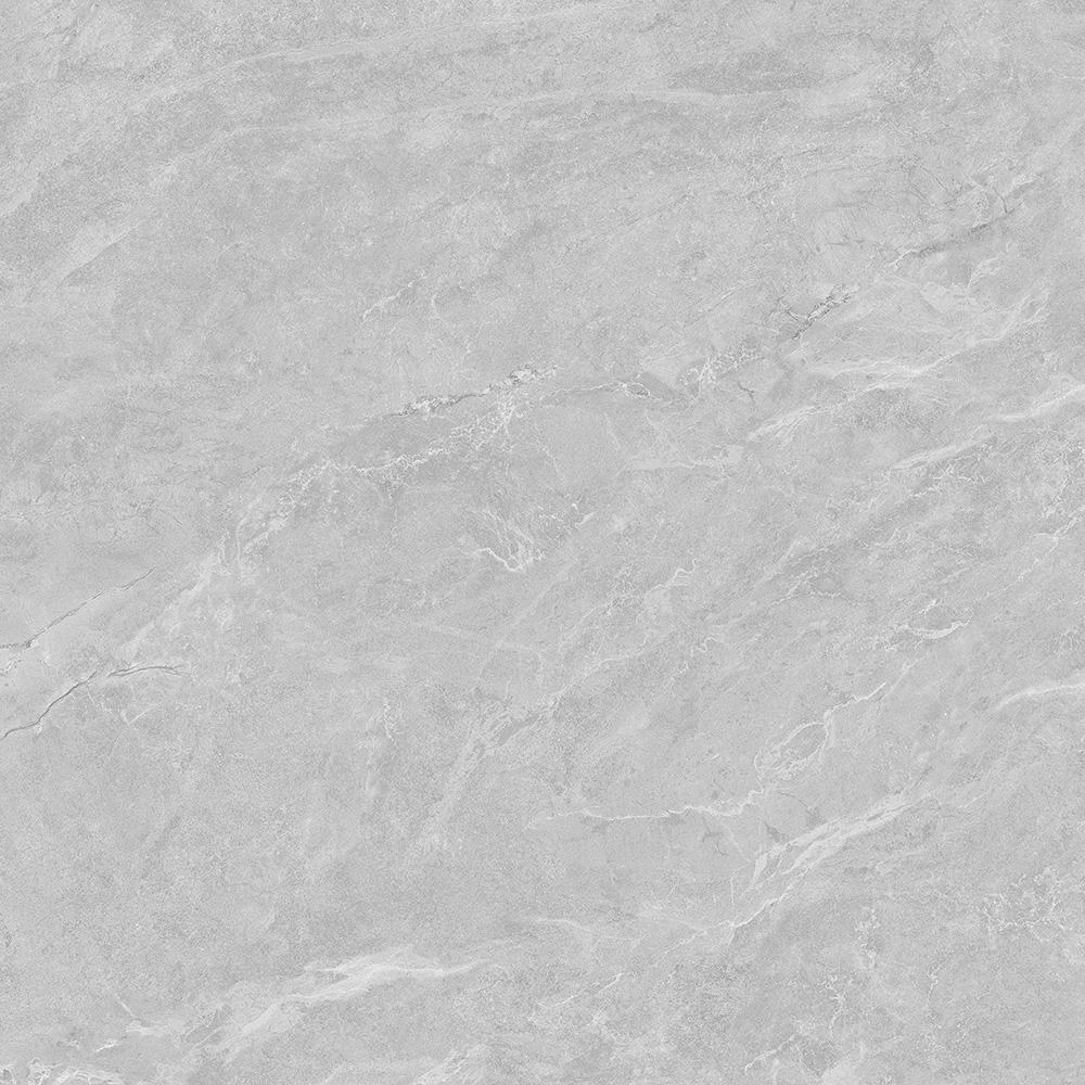 银龙灰 HYEG80029 800x800mm