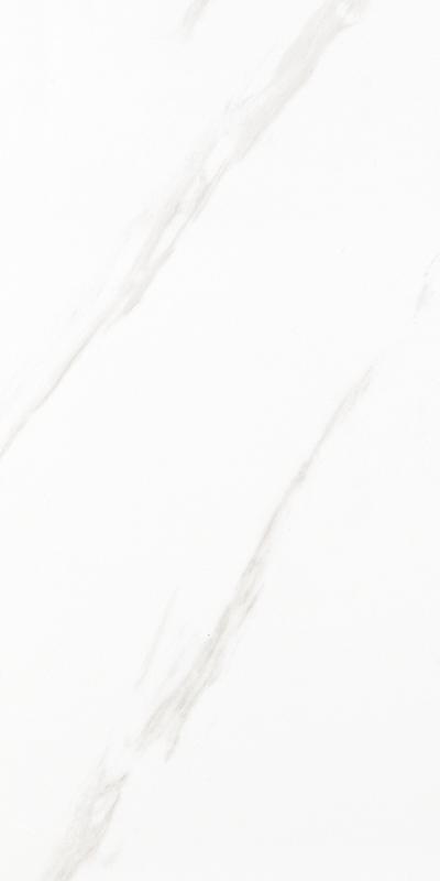 3A83739 300x800mm