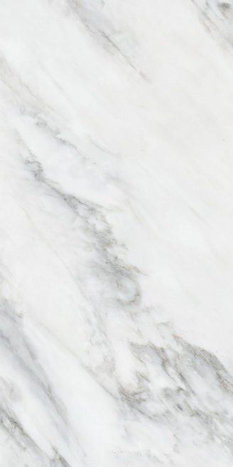 金沙网络娱乐-HPEB157003冰岛白
