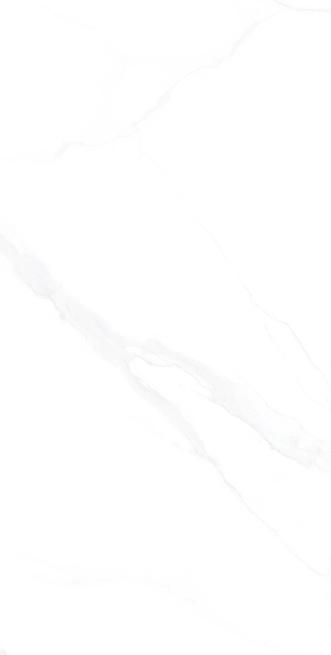 澳门新萄京手机版网址-HPGR84001卡拉卡塔白