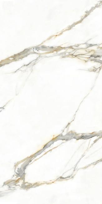 宏宇陶瓷-9-HPG2412A044(ABC)