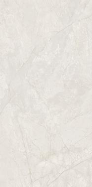 宏宇陶瓷-HPGR84010格丽米黄