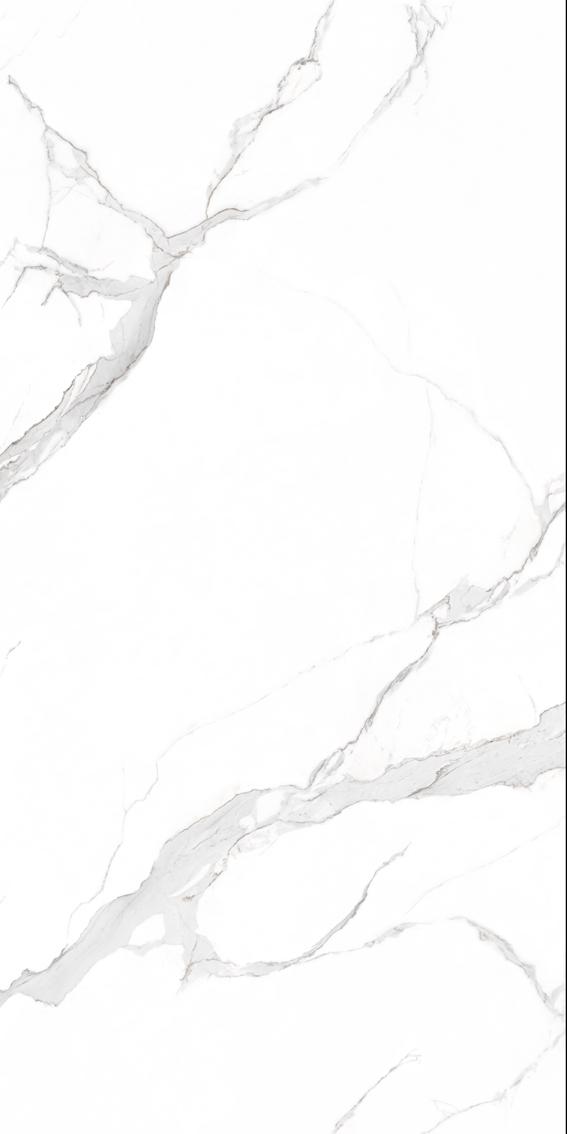 9-HPG2412A018香雪石