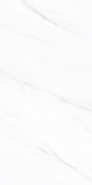 宏宇陶瓷-HPGR26017北极白
